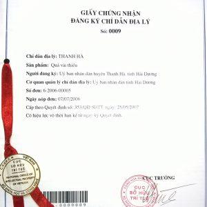 Luật ánh Sáng Việt
