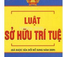 Luat Anh Sang Viet 2