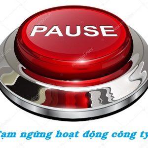 Tạm Ngừng Hoạt động Kinh Doanh ánh Sáng Việt
