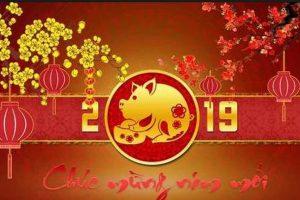 Chúc Mừng Năm Mới 2019( 2)